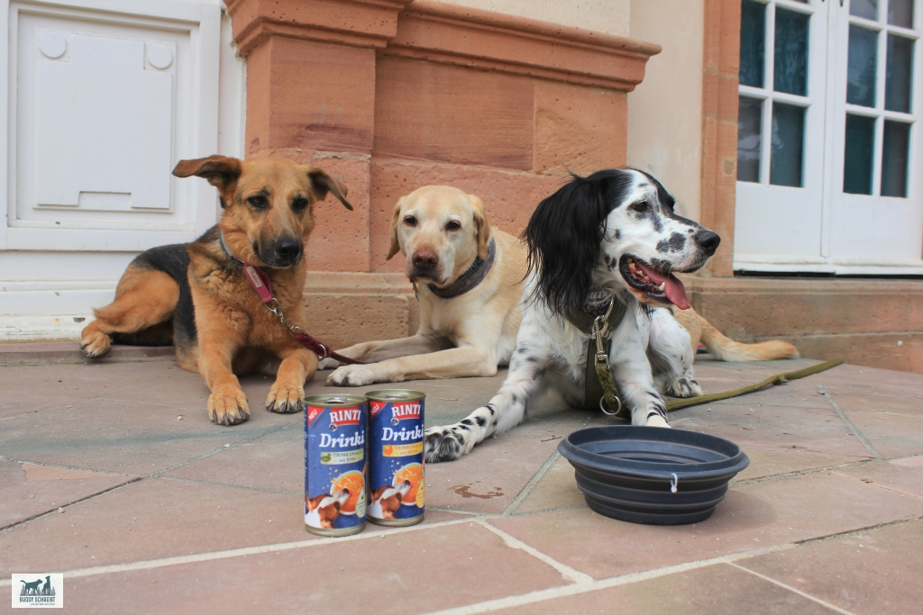 Rinti Drinki Trinksnack für Hunde in zwei Sorten als Pausensnack für meine Hunde