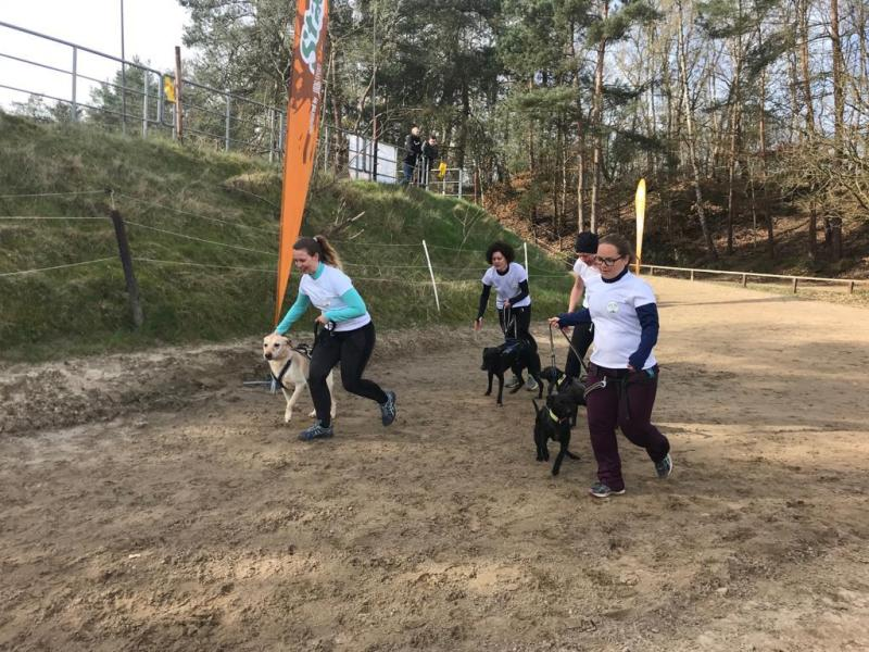 Handicap Hounds-Team beim Start Camp Canis
